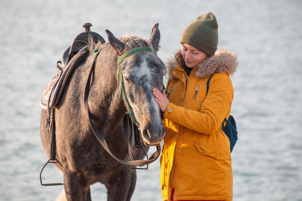 Конные прогулки в горах Ингушетии